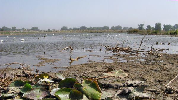 Maiduguri, Nigeria, Lake Alo