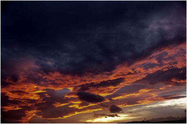 Oviedo 8:15 AM