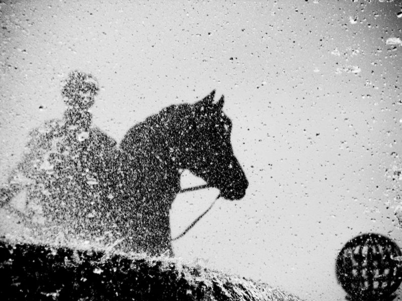 equestrian statue in trafalgar square