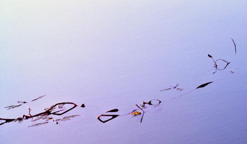 Ecrit sur l'eau