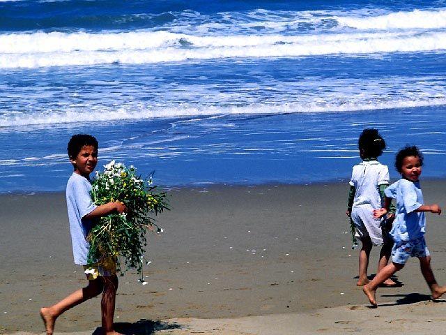 Bouquet marin