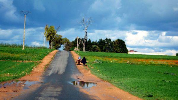 Sur la route du souk rural