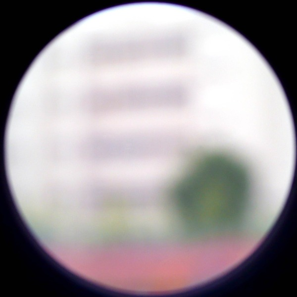Out of Focus 61