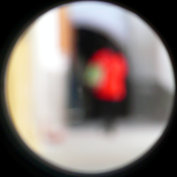 Out of Focus 66