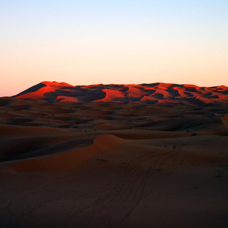 Depuis la haute dune 7/10