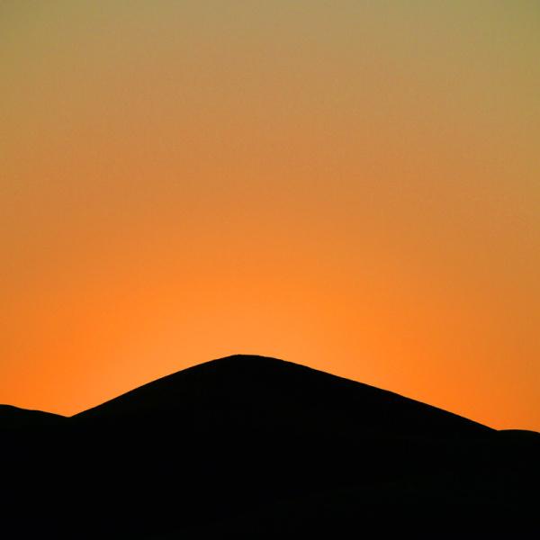 Patience dans le désert