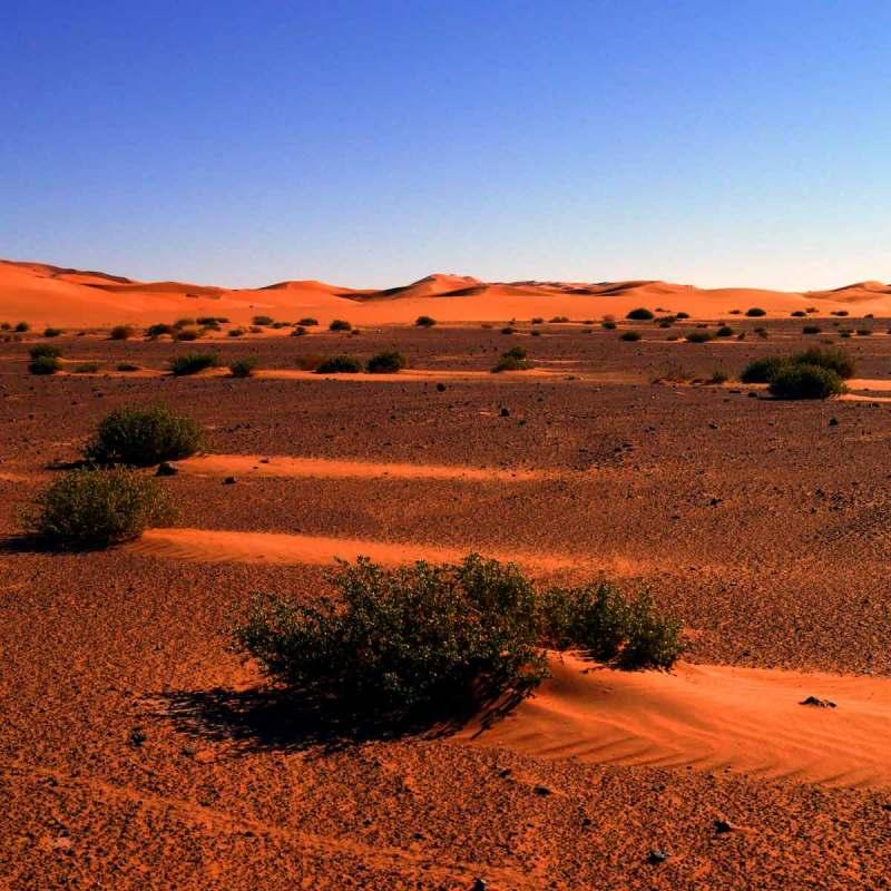 D'une dune l'autre...