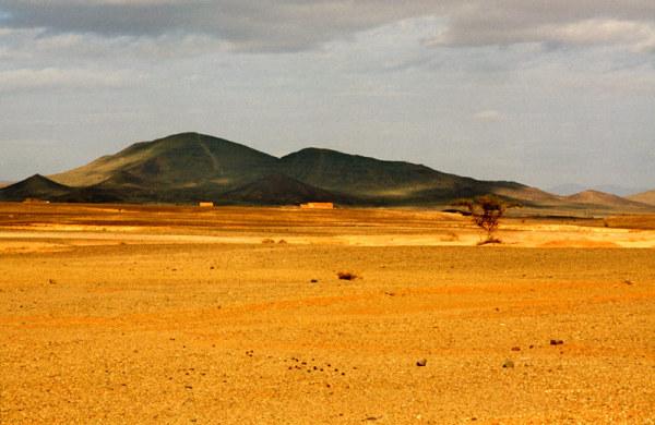 Impression désert 4