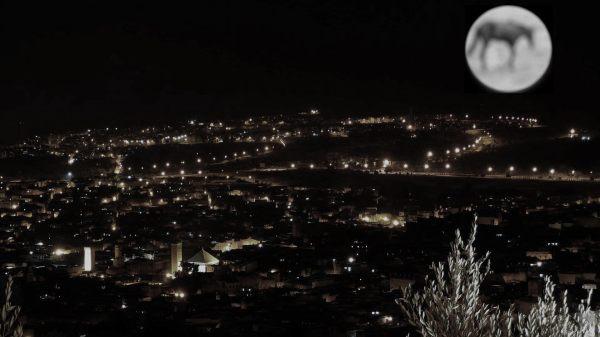 Pleine lune pour les nuls