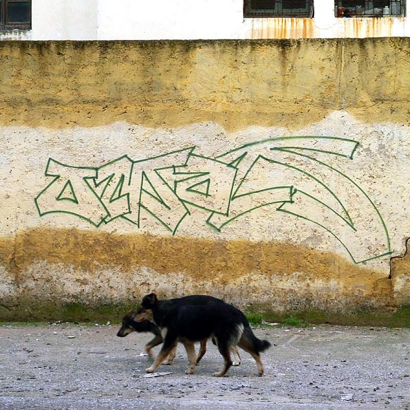 Chronophotographie d'un tag qui a du chien