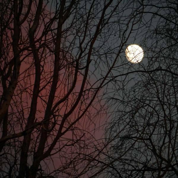Lune atlassique