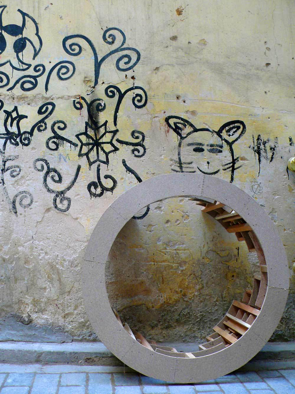 Quand le chat rond ronne