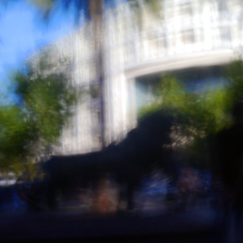 Le zoo du Barceló