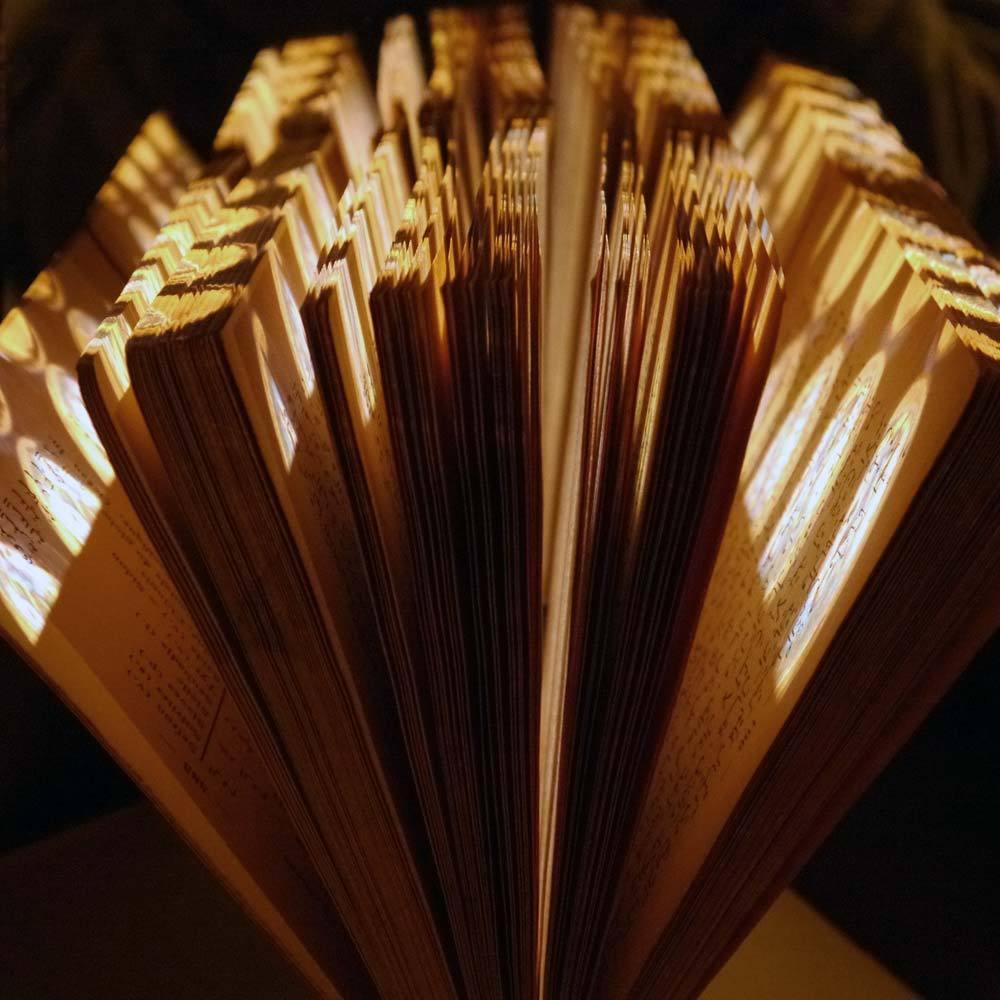 L'ivre lumière du livre 14