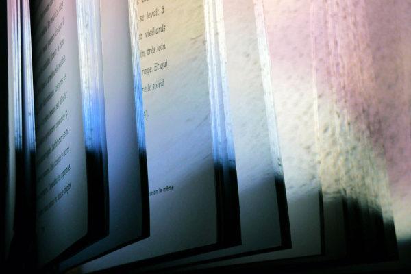 L'ivre lumière du livre 38