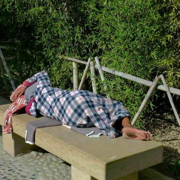 Petite sieste au parc
