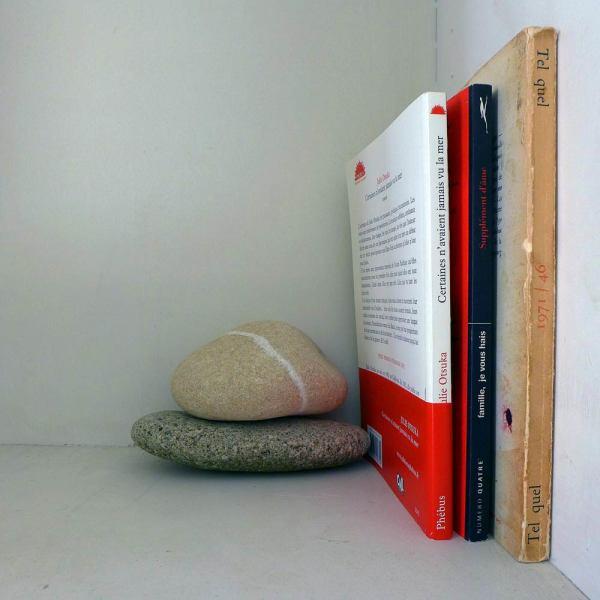 Trois livres et deux galets