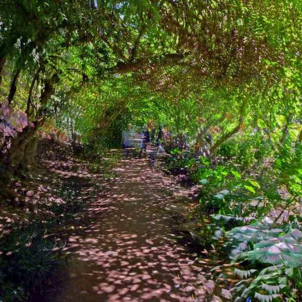 Dans le jardin du Chellah 6