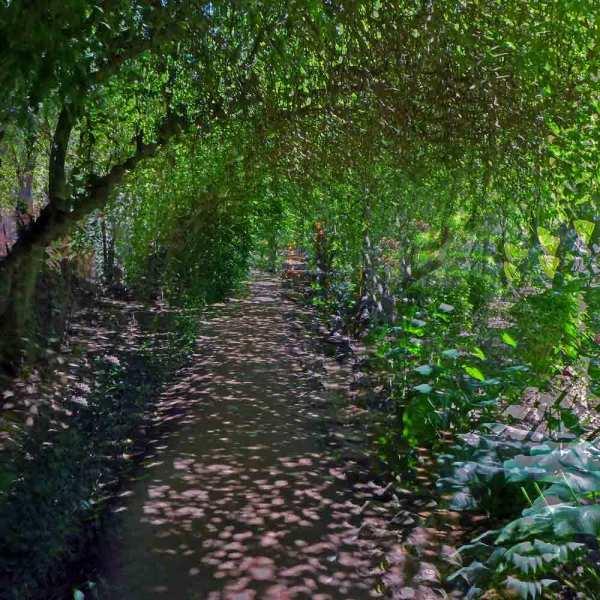 Dans le jardin du Chellah 7