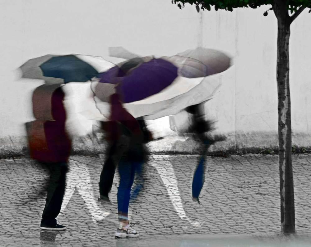 Avec l'alibi de la pluie