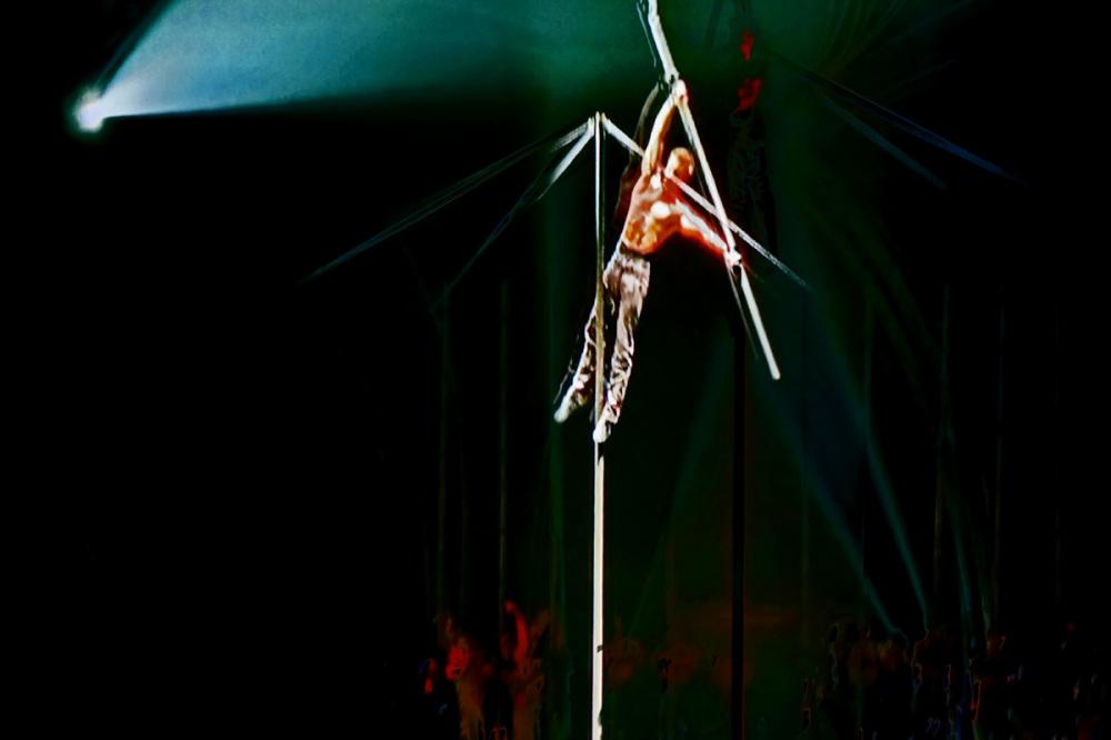 Tout un cirque dans ma boite noire