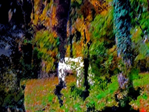 Le petit cheval blanc