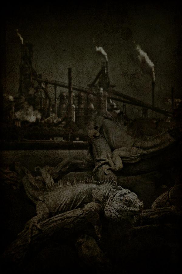 Iguana and Iron Factory