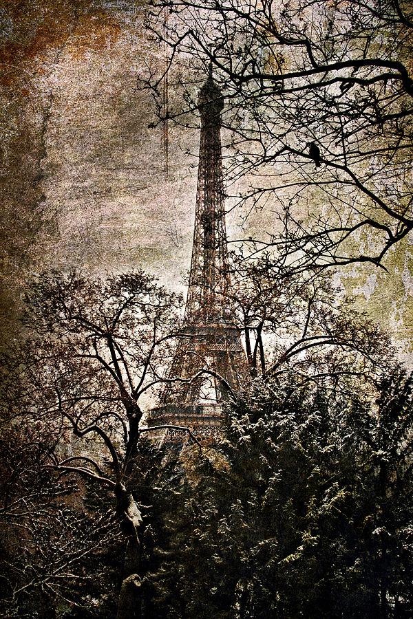 Paris winter