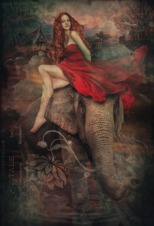 Elephant Lady1