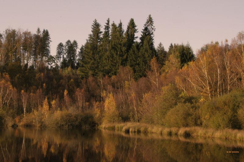 Vosges Saonoise : Etang
