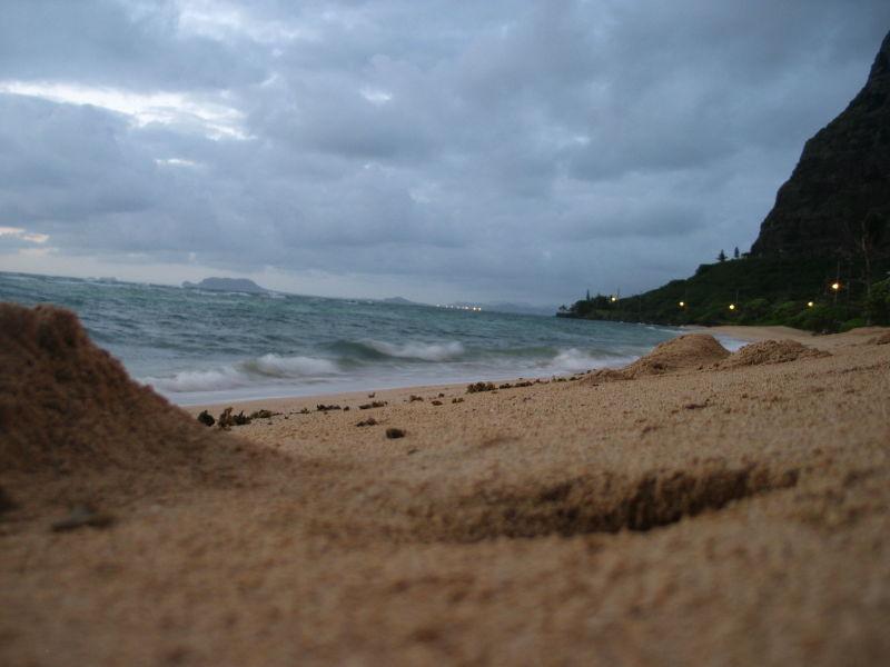 View From a Sandcrab's Front Door