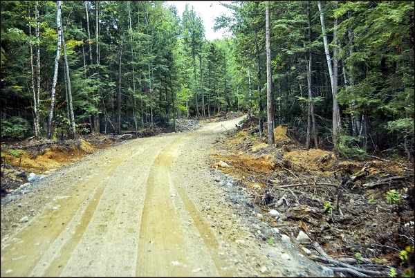 Riding Our New Logging Road, Maine