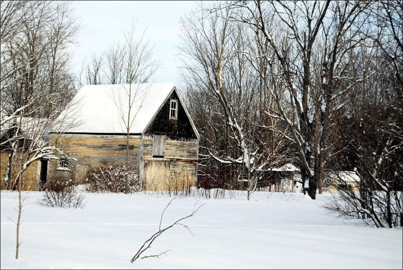 Old Shed, Maine