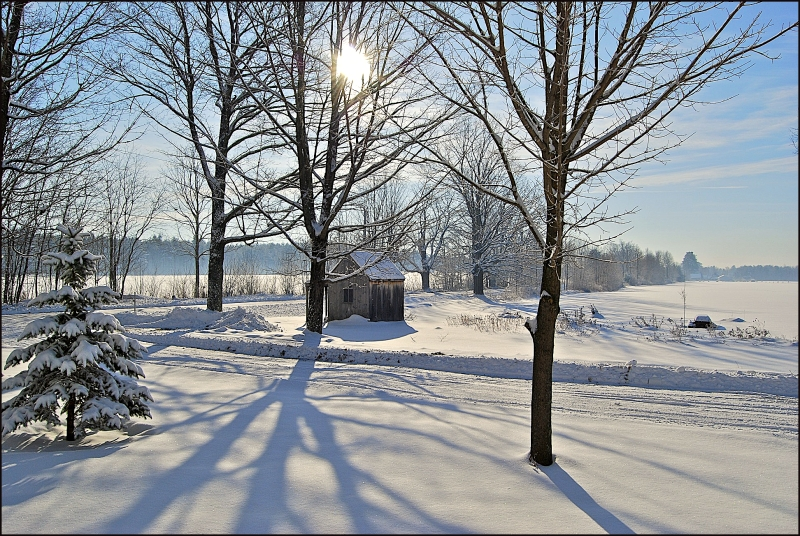 After a Snow, Maine 2009