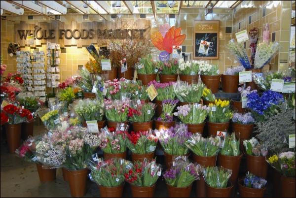 Whole Foods Flower Department Portland, ME