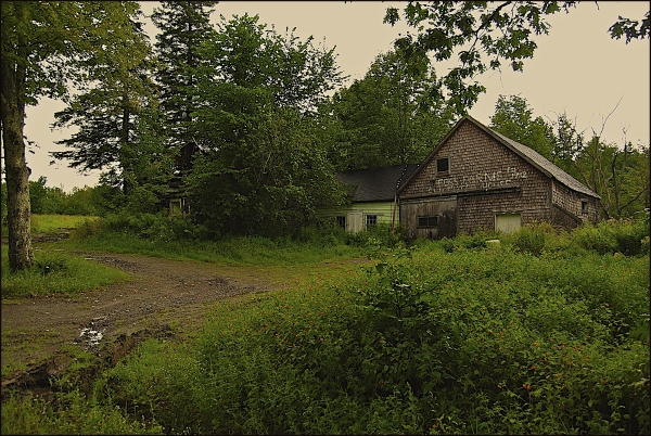 Abandoned Barn In Rural Maine 2011