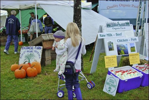 Common Ground Fair - Baby & Child