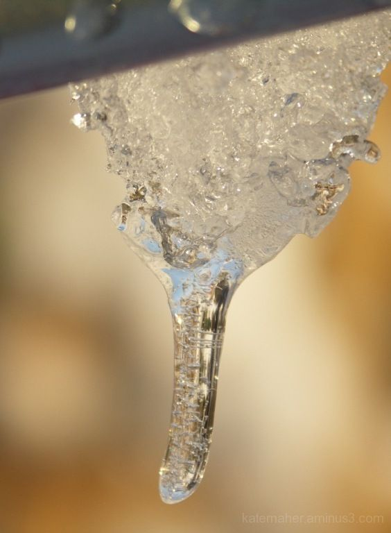 winter snow droplett
