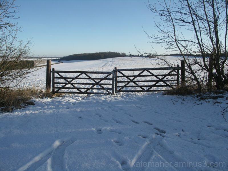 snow filled fields
