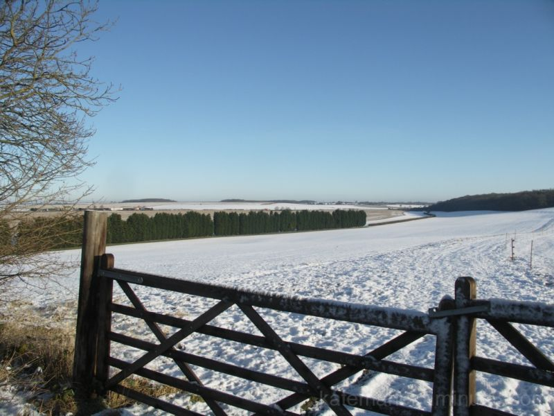 fields snow and gates