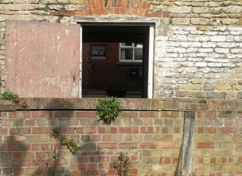 bricks & windows