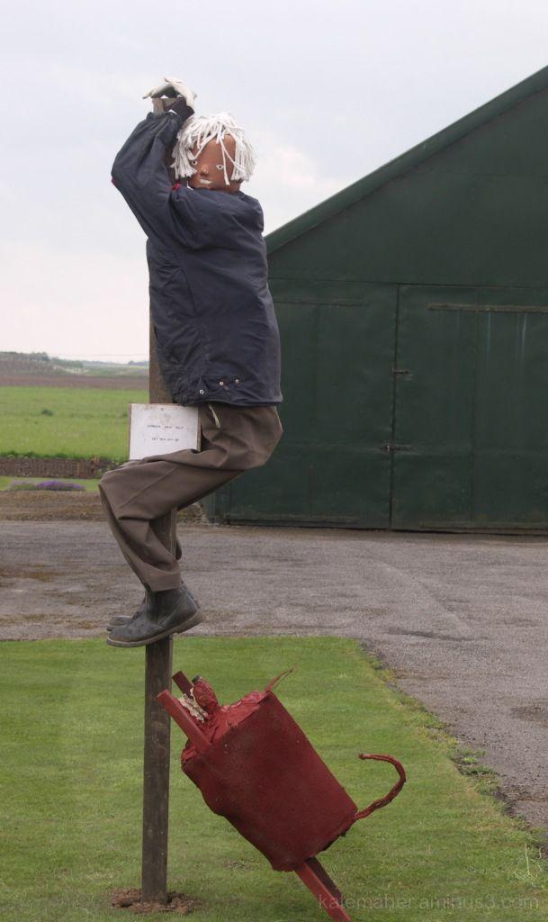 Up the pole!!
