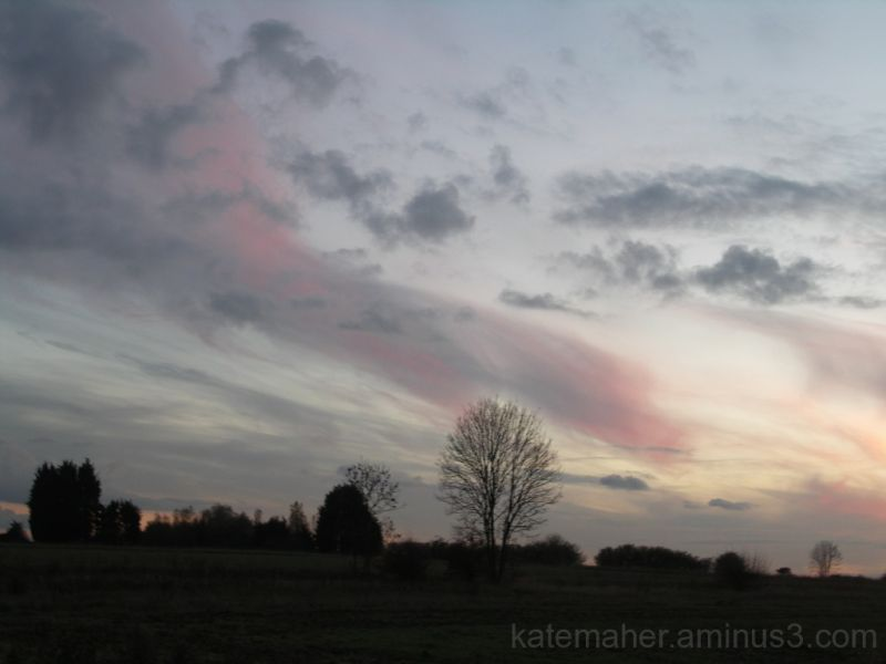 Evening Light 2