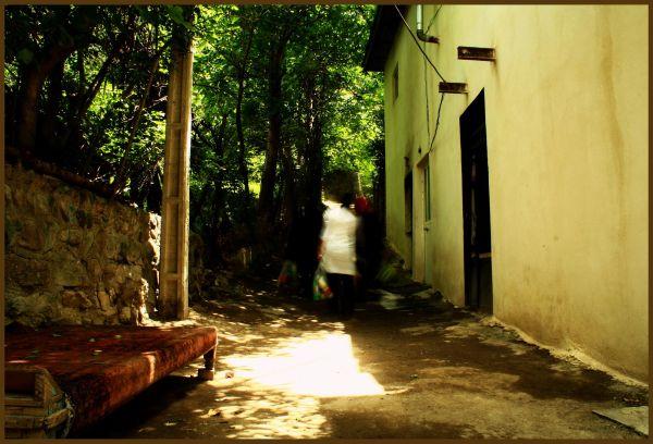 desolation bob dylan life people rug love culture