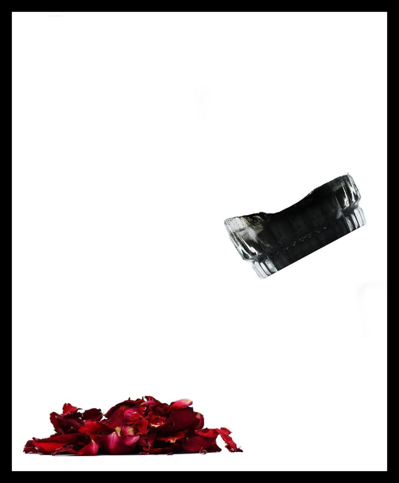 Rose free collage