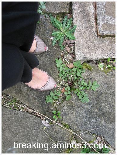 Legs always in the scene - 5