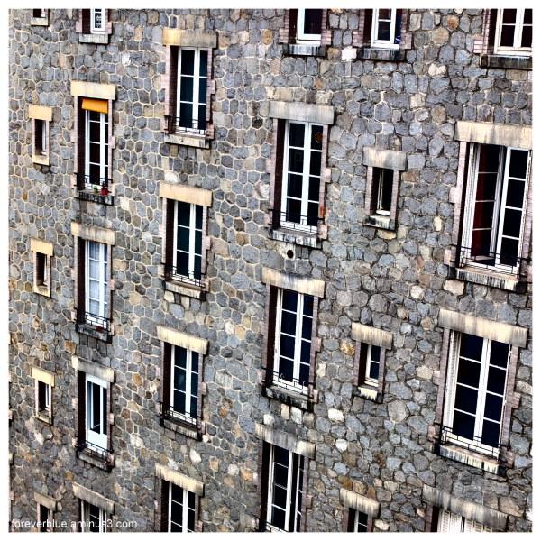 ...WINDOWS ...