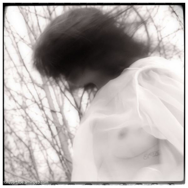 ...THE WIND ...