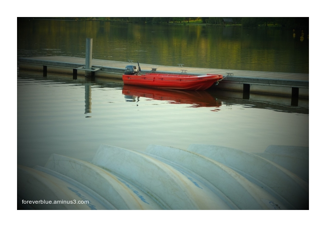 ... THE RED BOAT ...