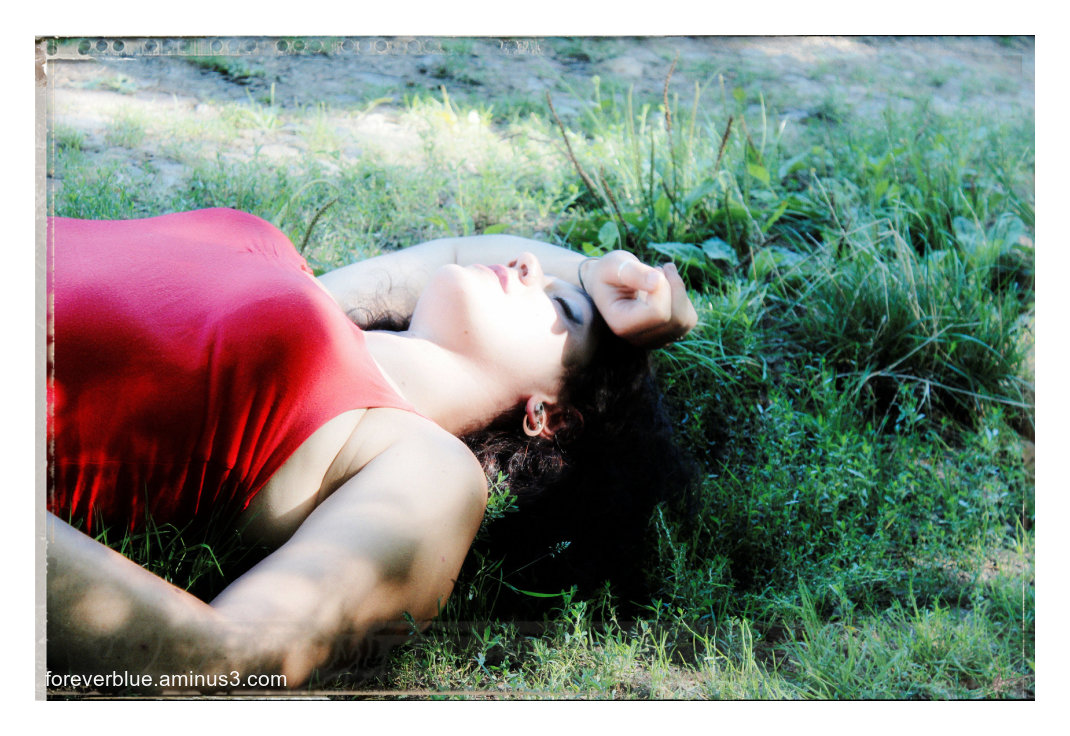 1. ASLEEP IN THE GRASS ....